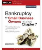 The Tax Debts of Small Business Owners in Bankruptcy