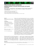 Báo cáo khoa học: Thiaminylated adenine nucleotides Chemical synthesis, structural characterization and natural occurrence