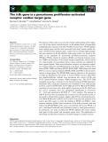 Báo cáo khoa học: The IjBa gene is a peroxisome proliferator-activated receptor cardiac target gene
