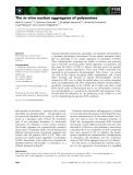 Báo cáo khoa học: The in vitro nuclear aggregates of polyamines