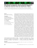Báo cáo khoa học: Site-directed mutagenesis, kinetic and inhibition studies of aspartate ammonia lyase from Bacillus sp. YM55-1
