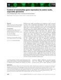 Báo cáo khoa học: Control of mammalian gene expression by amino acids, especially glutamine