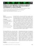 Báo cáo khoa học: Evidence for b-lactoglobulin involvement in vitamin D transport in vivo – role of the c-turn (Leu-Pro-Met) of b-lactoglobulin in vitamin D binding