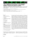 Báo cáo khoa học: The hemoglobins of the sub-Antarctic fish Cottoperca gobio, a phyletically basal species – oxygen-binding equilibria, kinetics and molecular dynamics