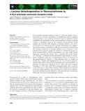 Báo cáo khoa học: L-Lactate dehydrogenation in flavocytochrome b2 A first principles molecular dynamics study