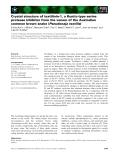 Báo cáo khoa học: Crystal structure of textilinin-1, a Kunitz-type serine protease inhibitor from the venom of the Australian common brown snake (Pseudonaja textilis)