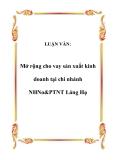 Luận văn đề tài : Mở rộng cho vay sản xuất kinh doanh tại chi nhánh NHNo&PTNT Láng Hạ