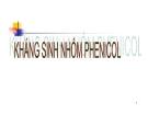 Bài giảng Đại cương hóa dược -  Kháng sinh nhóm Phenicol