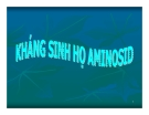 Bài giảng Đại cương hóa dược -  Những kháng sinh họ Aminosid