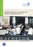 Bachelor of Science in Economics and  Business Administration (B.Sc.)