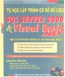 Ebook Tự học lập trình cơ sở dữ liệu SQL Server 2000 và Visual Basic.Net - NXB Giao thông Vận tải