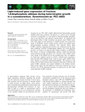 Báo cáo khoa học: Light-induced gene expression of fructose 1,6-bisphosphate aldolase during heterotrophic growth in a cyanobacterium, Synechocystis sp. PCC 6803
