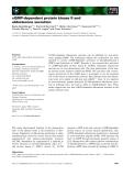 Báo cáo khoa học: cGMP-dependent protein kinase II and aldosterone secretion