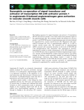Báo cáo khoa học: Synergistic co-operation of signal transducer and activator of transcription 5B with activator protein 1 in angiotensin II-induced angiotensinogen gene activation in vascular smooth muscle cells