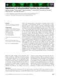 Báo cáo khoa học: Impairment of mitochondrial function by minocycline