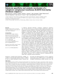 Báo cáo khoa học: Substrate specificity and catalytic mechanism of a xyloglucan xyloglucosyl transferase HvXET6 from barley (Hordeum vulgare L.)