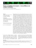 Báo cáo khoa học: Human anti-ErbB2 immunoagents – immunoRNases and compact antibodies