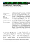 Báo cáo khoa học: Competition between innate multidrug resistance and intracellular binding of rhodamine dyes
