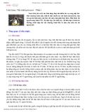 Unix/Linux: Tiến trình (process) – Phần 1