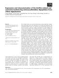 Báo cáo khoa học: Expression and characterization of the biofilm-related and carnosine-hydrolyzing aminoacylhistidine dipeptidase from Vibrio alginolyticus