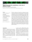 Báo cáo khoa học: Marine toxins and the cytoskeleton: a new view of palytoxin toxicity