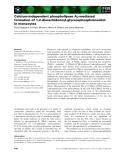 Báo cáo khoa học: Calcium-independent phospholipase A2-mediated formation of 1,2-diarachidonoyl-glycerophosphoinositol in monocytes