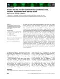 Báo cáo khoa học: Marine toxins and the cytoskeleton: pectenotoxins, unusual macrolides that disrupt actin