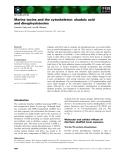Báo cáo khoa học: Marine toxins and the cytoskeleton: okadaic acid and dinophysistoxins
