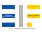European Investment Fund - Birthe Bruhn-Léon Head of Mandate Management