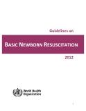 Guidelines on BASIC NEWBORN RESUSCITATION 2012