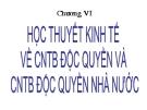 Chương VI: Học thuyết kinh tế về CNTB độc quyền và CNTB độc quyền nhà nước