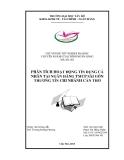 Luận văn: PHÂN TÍCH HOẠT ĐỘNG TÍN DỤNG CÁ NHÂN TẠI NGÂN HÀNG TMCP SÀI GÒN THƯƠNG TÍN CHI NHÁNH CẦN THƠ