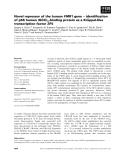 Báo cáo khoa học: Novel repressor of the human FMR1 gene ) identification ¨ of p56 human (GCC)n-binding protein as a Kruppel-like transcription factor ZF5
