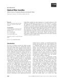 Báo cáo khoa học: Optical-fiber bundles