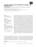 Báo cáo khoa học: Triterpene synthases from the Okinawan mangrove tribe, Rhizophoraceae