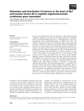 Báo cáo khoa học: Glutamine and interleukin-1b interact at the level of Sp1 and nuclear factor-jB to regulate argininosuccinate synthetase gene expression