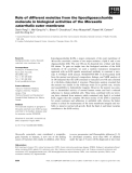 Báo cáo khoa học: Role of different moieties from the lipooligosaccharide molecule in biological activities of the Moraxella catarrhalis outer membrane