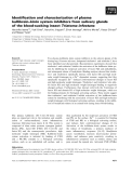 Báo cáo khoa học: Identification and characterization of plasma kallikrein–kinin system inhibitors from salivary glands of the blood-sucking insect Triatoma infestans