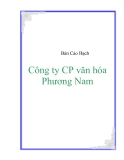Bản cáo bạch công ty Phương Nam - PNC