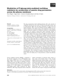 Báo cáo khoa học: Modulation of P-glycoprotein-mediated multidrug resistance by acceleration of passive drug permeation across the plasma membrane