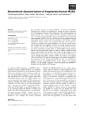 Báo cáo khoa học: Biochemical characterization of fragmented human MCM2