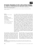 Báo cáo khoa học: Proteolytic degradation of nitric oxide synthase isoforms by calpain is modulated by the expression levels of HSP90