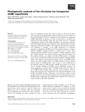 Báo cáo khoa học: Phylogenetic analysis of the chromate ion transporter (CHR) superfamily