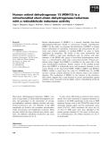 Báo cáo khoa học: Human retinol dehydrogenase 13 (RDH13) is a mitochondrial short-chain dehydrogenase⁄reductase with a retinaldehyde reductase activity