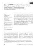 Báo cáo khoa học: Ciz1, a p21Cip1/ Waf1-interacting zinc finger protein and DNA replication factor, is a novel molecular partner for human enhancer of rudimentary homolog
