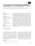 Báo cáo khoa học: Structural and functional investigations of Ureaplasma parvum UMP kinase – a potential antibacterial drug target