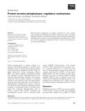 Báo cáo khoa học: Protein tyrosine phosphatases: regulatory mechanisms