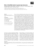 Báo cáo khoa học: Role of disulfide bonds in goose-type lysozyme