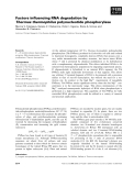 Báo cáo khoa học: Factors influencing RNA degradation by Thermus thermophilus polynucleotide phosphorylase