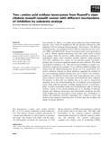 Báo cáo khoa học: Two L-amino acid oxidase isoenzymes from Russell's viper (Daboia russelli russelli) venom with different mechanisms of inhibition by substrate analogs